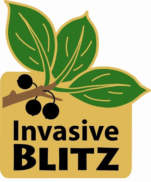 Invasive blitz pin
